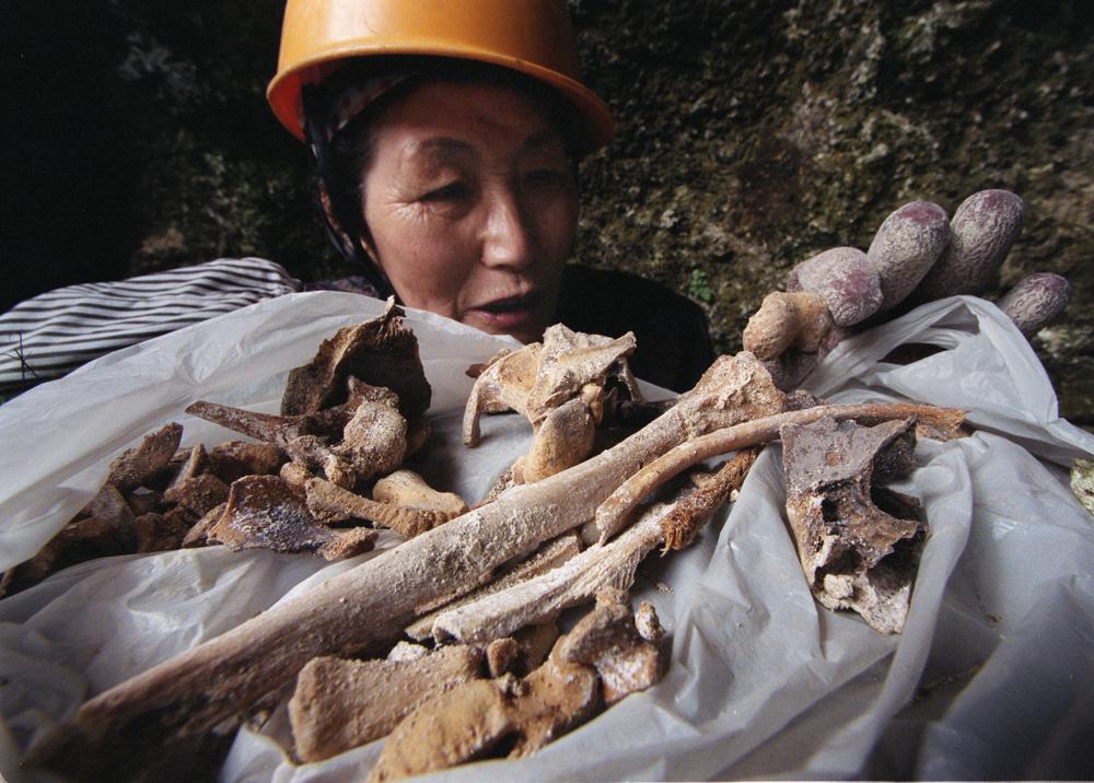 掘り出した遺骨を並べる富美子さん