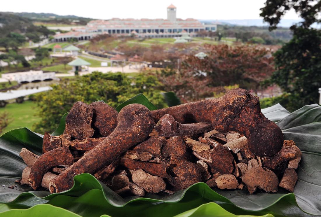 沖縄平和祈念公園内の壕付近で昨年、掘り出した遺骨。後方に見えるのは平和祈念資料館