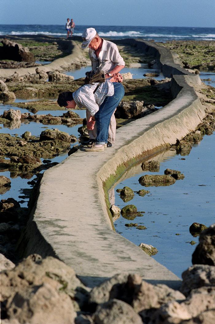大勢の方が亡くなり、波打ち際を埋め尽くした海岸で慰霊する井上夫妻、本島南部の大度海岸で