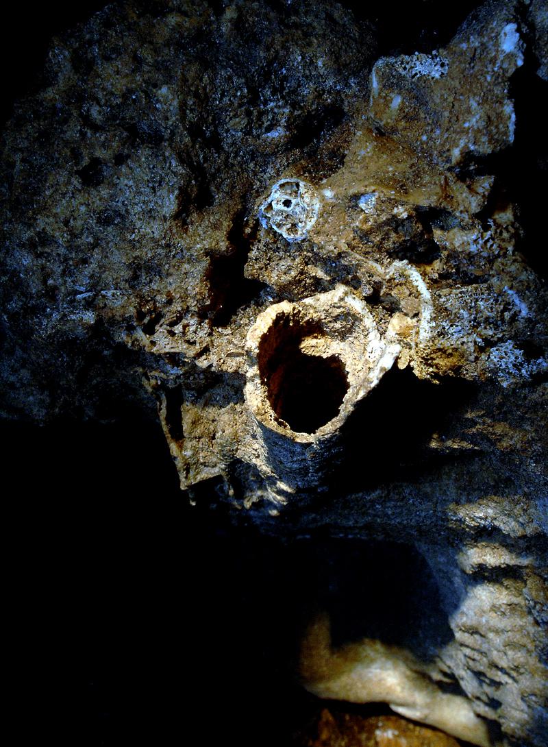 未調査の洞穴にある人骨。岩に腕か足の骨の一部が溶け込んだようになっている