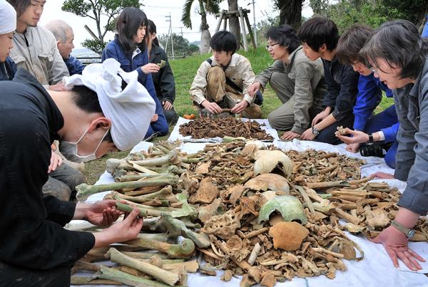 収集した遺骨を選別する学生たち