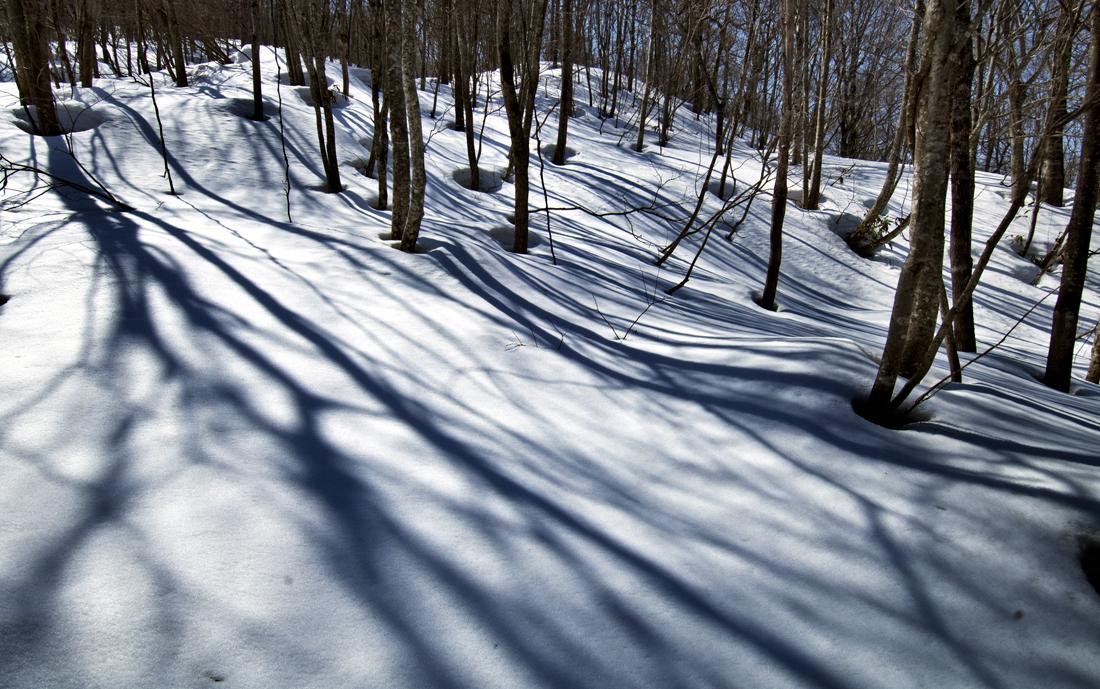 初春の雪山③hp