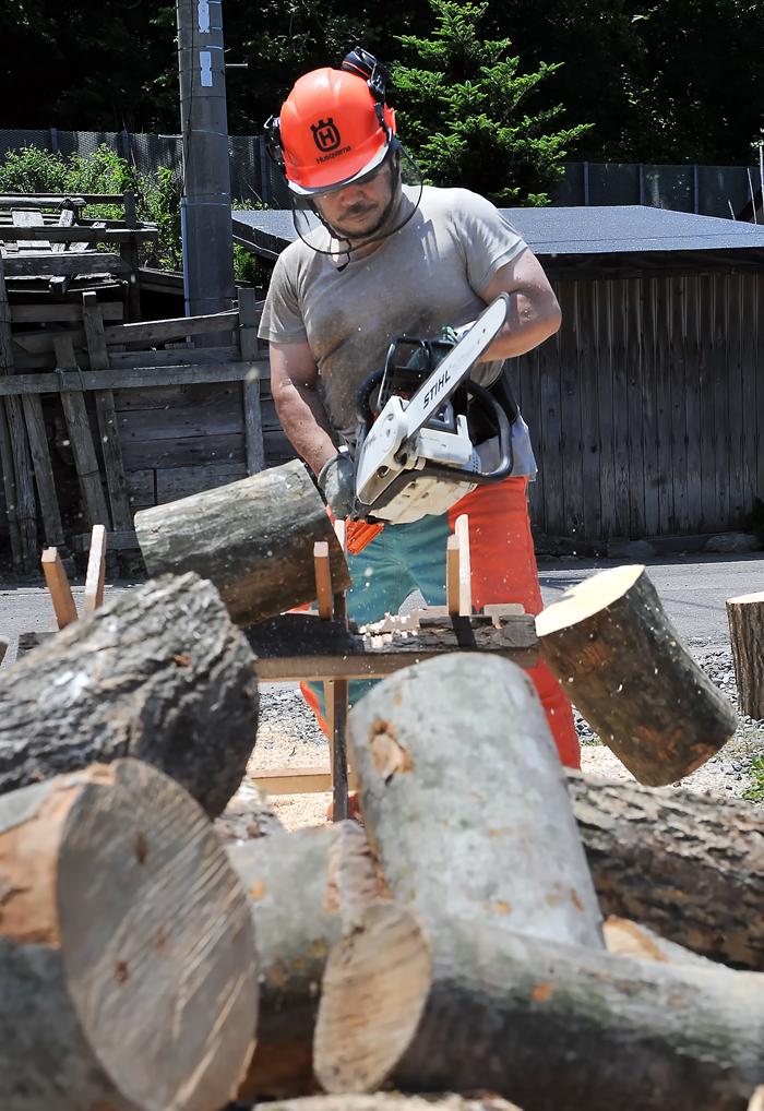 切れた途端、大きな丸太は自然に木が地面へ落ちる
