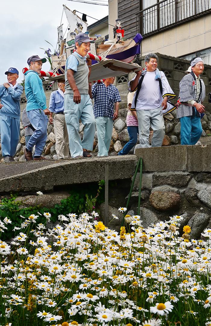 マーガレットが咲く民家の庭先を通る春日丸の舟神輿
