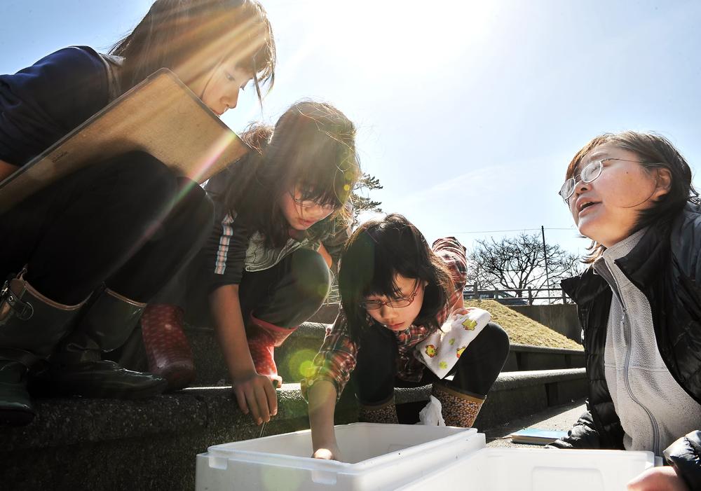 水生昆虫の調査はスノリガモの食性を知る重要な調査よ、と律子先生。その教えを真剣に受け止める