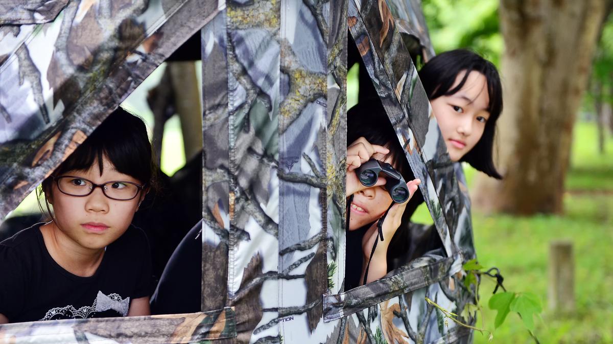ブラインドテントから、シノリガモを観察する3人娘