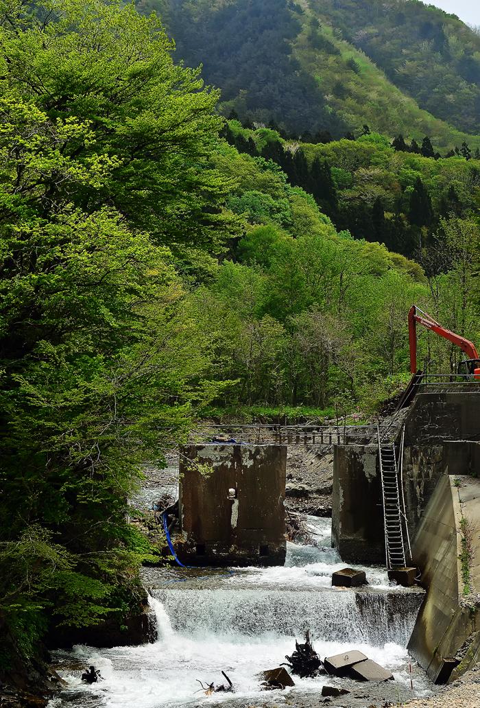 新緑が美しい白神山地を流れる川に作られている堰堤