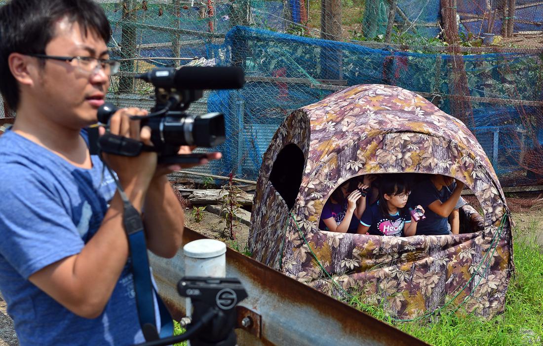 カメラを構える藤岡アナウンサーとブラインドテント内で観察する子どもたち=深浦町で