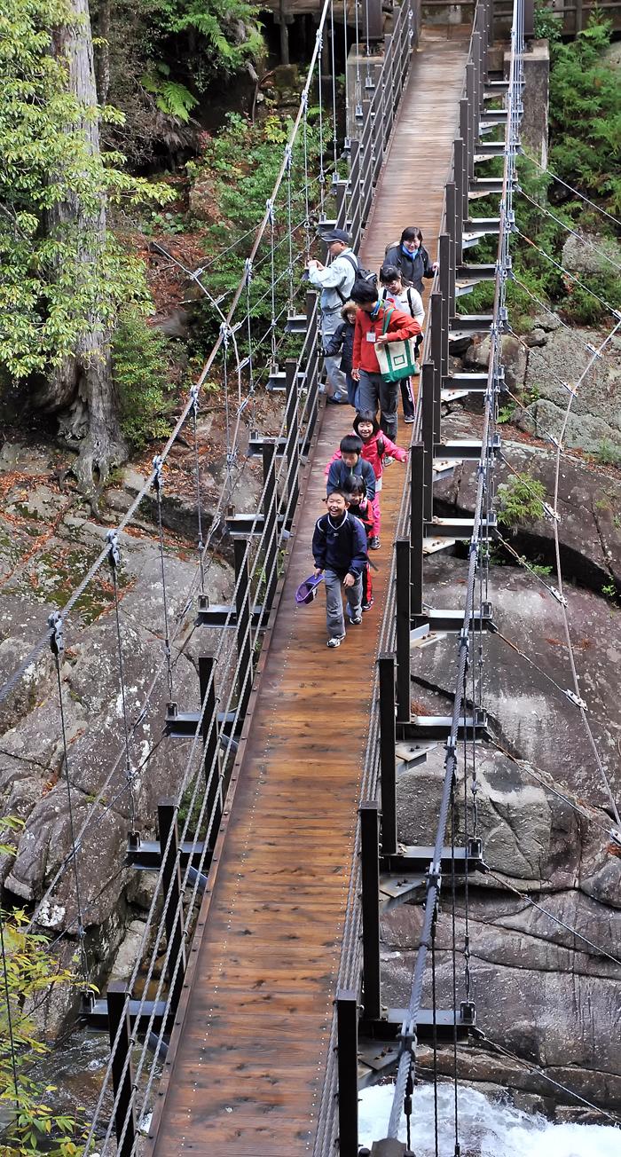 吊り橋を渡るとき、悪戯者が橋を揺らした。許せん!