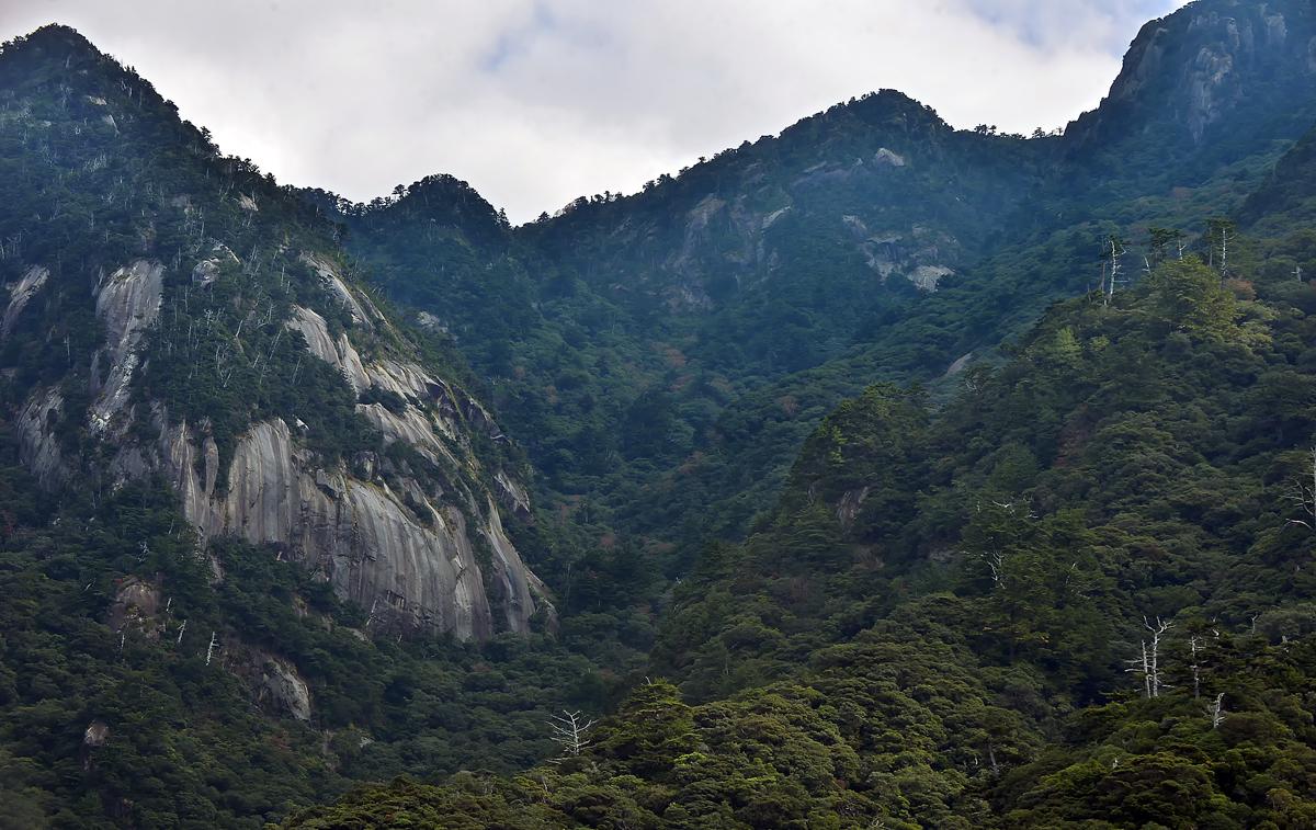 ゴツゴツして、すごい形のお山。崩山に似ている?