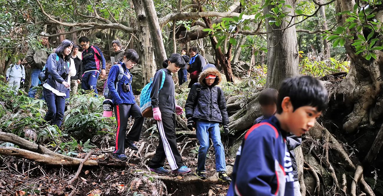 両遺産地域の子供たちが、屋久島の遺産地域の森を歩く