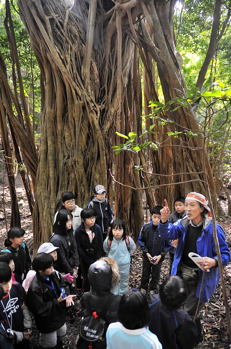 白神と屋久島の子供たちが、亜熱帯の世界遺産の森で一緒に観察会をした=屋久島町で