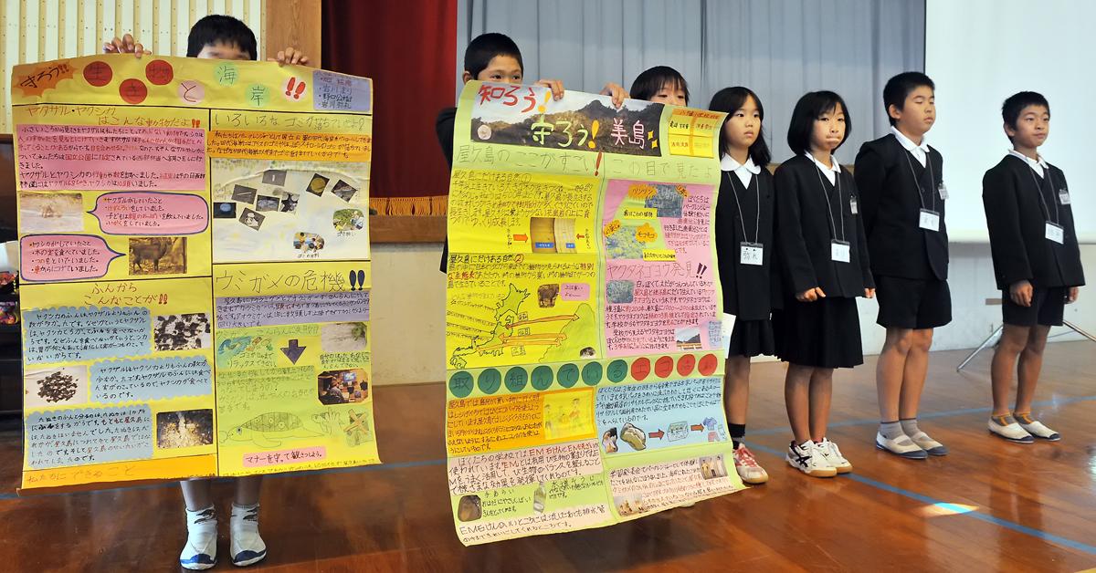 八幡小学校の五年生がまとめたヤクタネゴヨウの調査結果