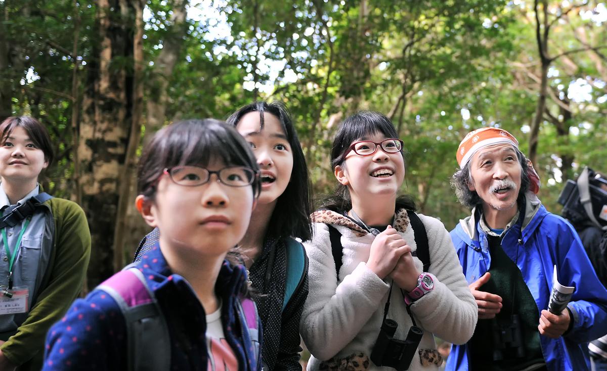 森の中に野生動物を発見。ダメ、大きな声を出しちゃ