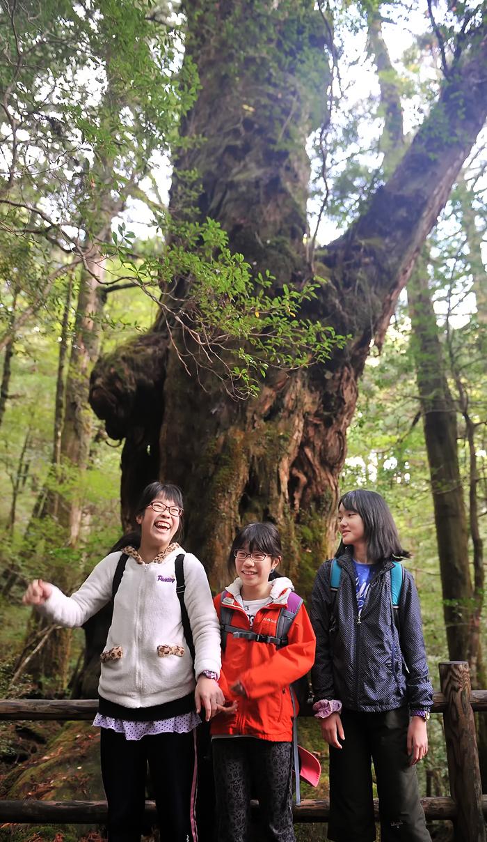 仏陀杉の前で記念撮影。いつもおどける三人娘