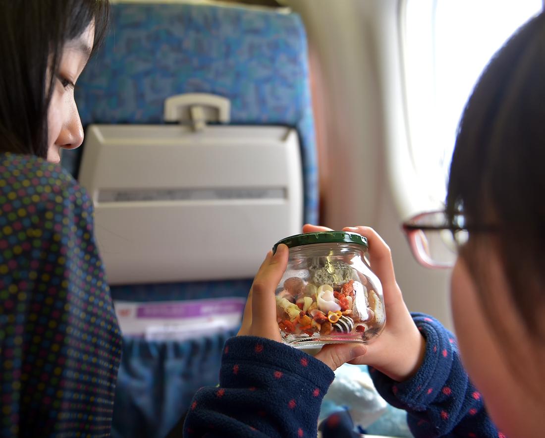 機内で屋久島で拾った貝やサンゴの破片を見る。楽しかったなぁ、また来たいなぁ
