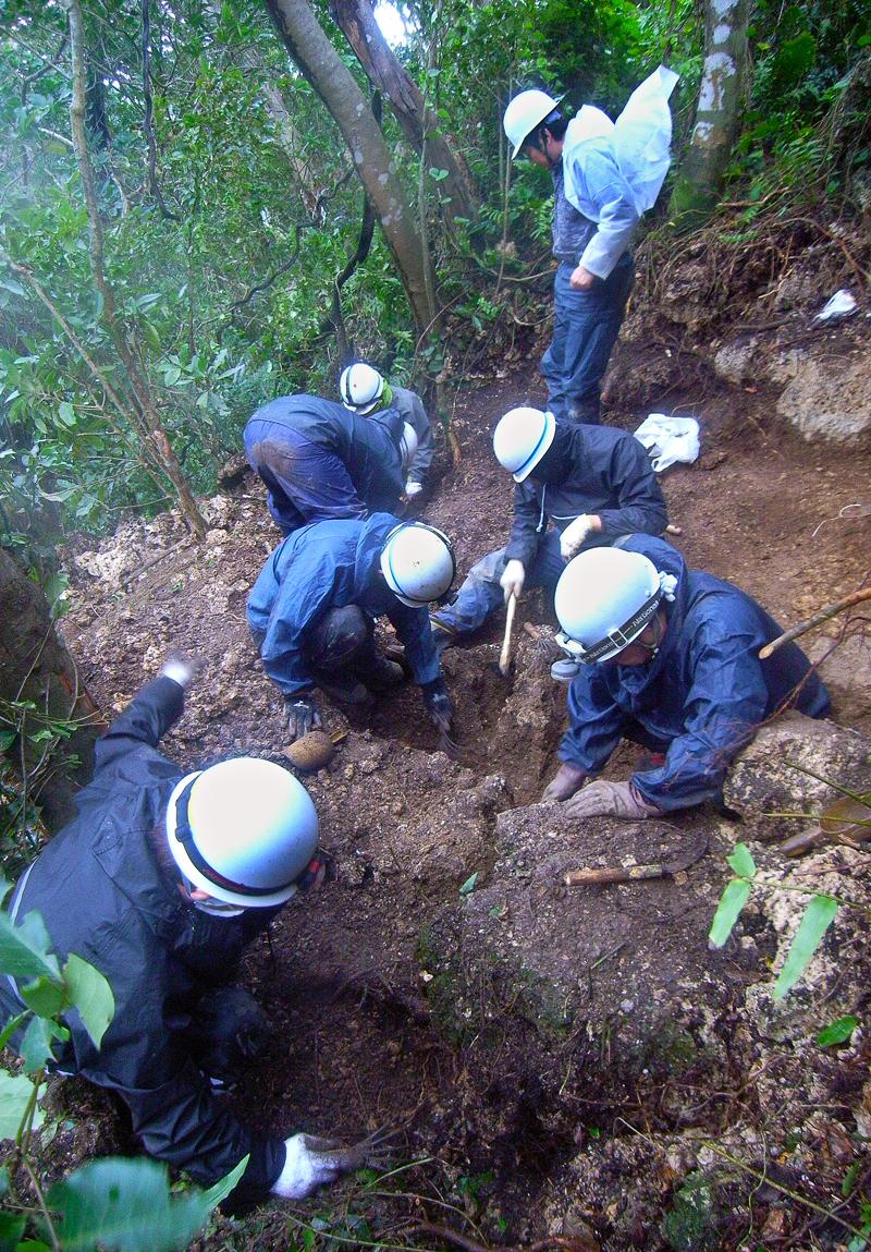 亜熱帯のジャングルに残されていた陣地跡で活動する会のメンバー
