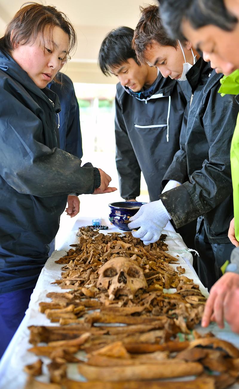 掘り出した遺骨を並べる