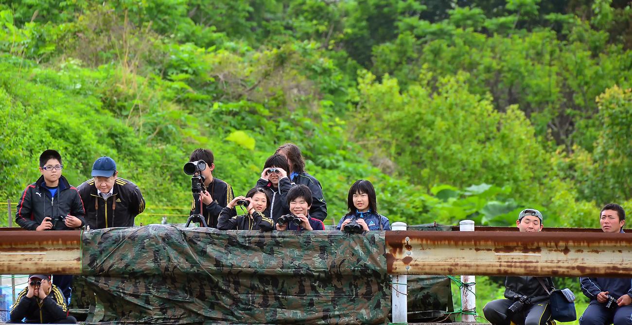 新緑が美しい川で、シノリガモ観察をする新6年生たち