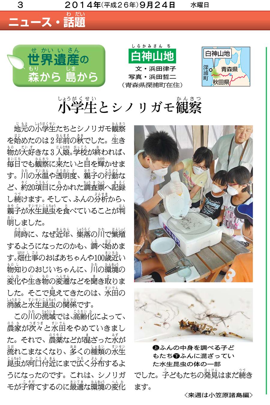 朝日小学生新聞の連載「白神シリーズ」11回目の記事