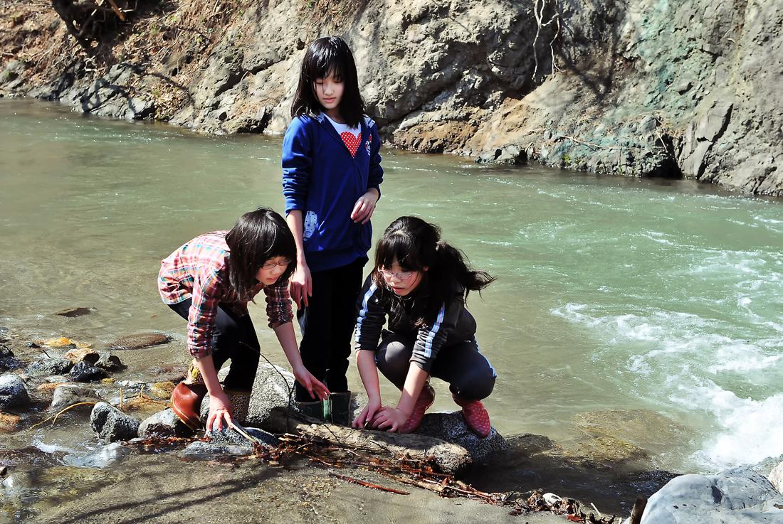 雪解け水が流れる川で水生昆虫を採集する3人娘