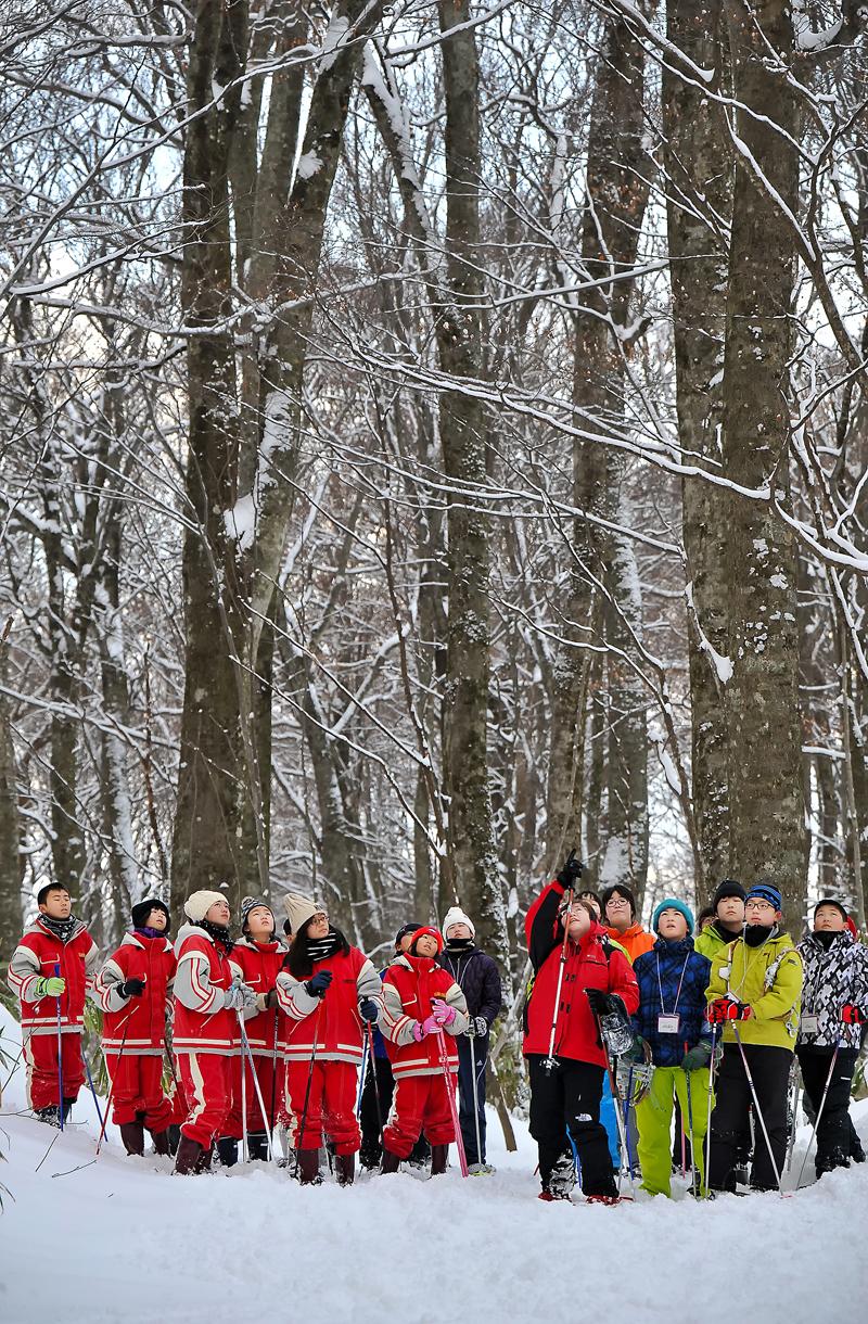 雪が降り積もったブナの自然林の中で観察会