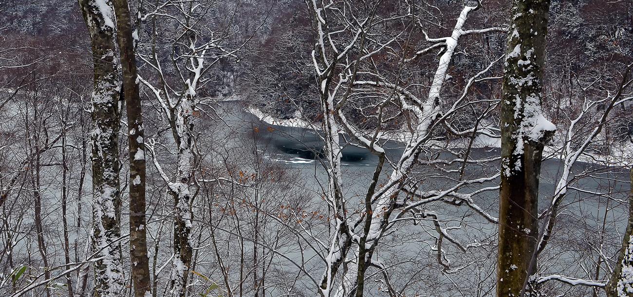 厳冬期の鶏頭場の池。一部が結氷している