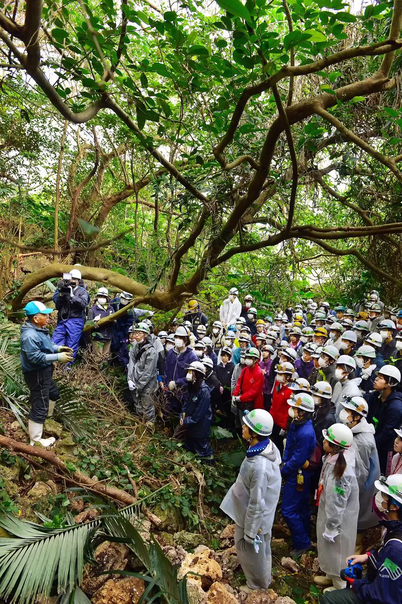 日本軍の陣地跡が残るジャングルで、遺骨収集に臨むIVUSAの学生たち