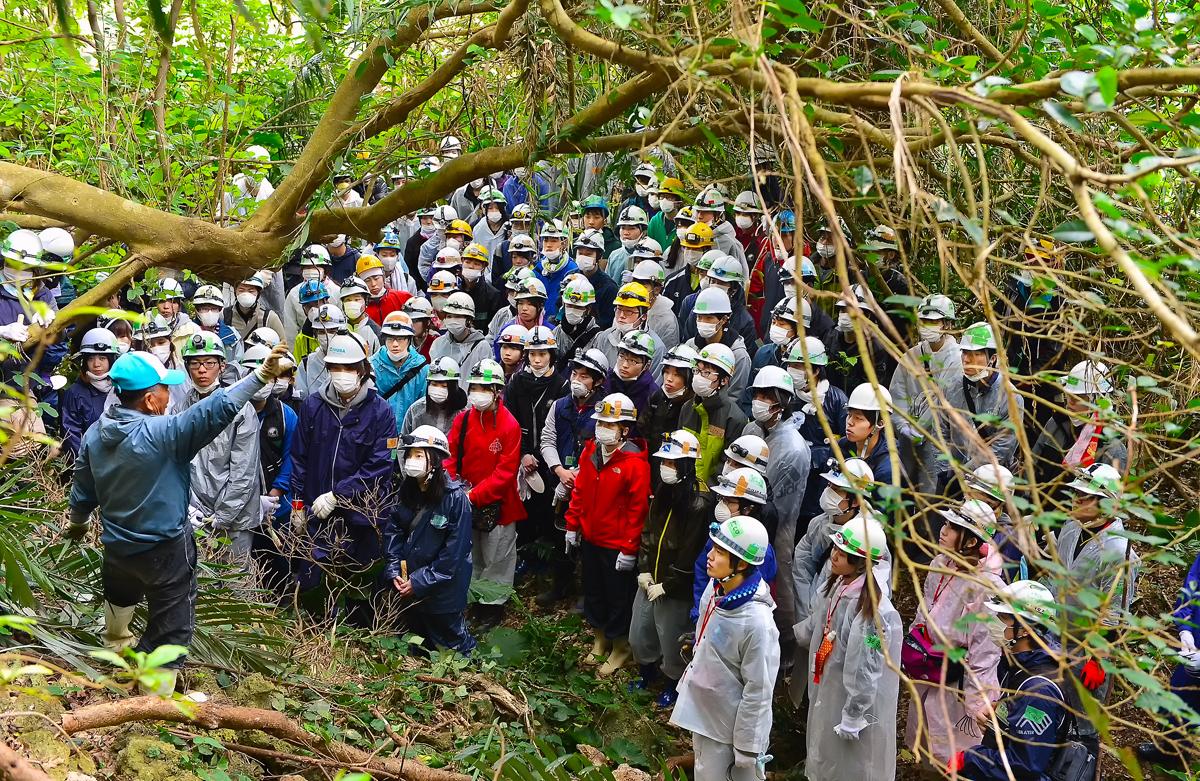 沖縄本島南部のジャングルで、遺骨取集に臨むIVUSAの学生たち