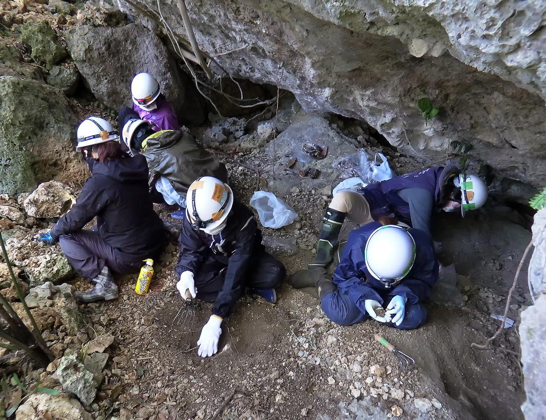 岩の庇の下で遺骨を収集する学生ら