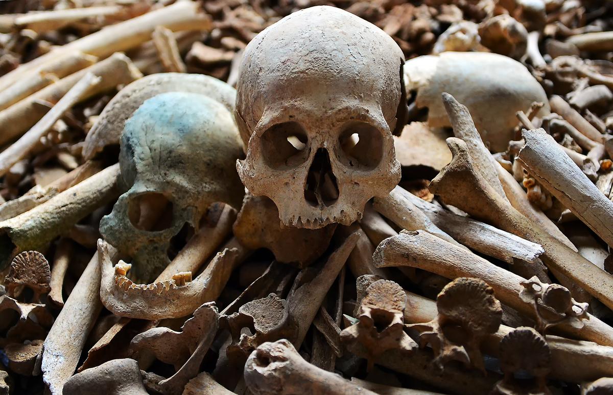 終戦から70年が過ぎても、壕や土の中に眠っていた遺骨。国による収容は遅々として進まない