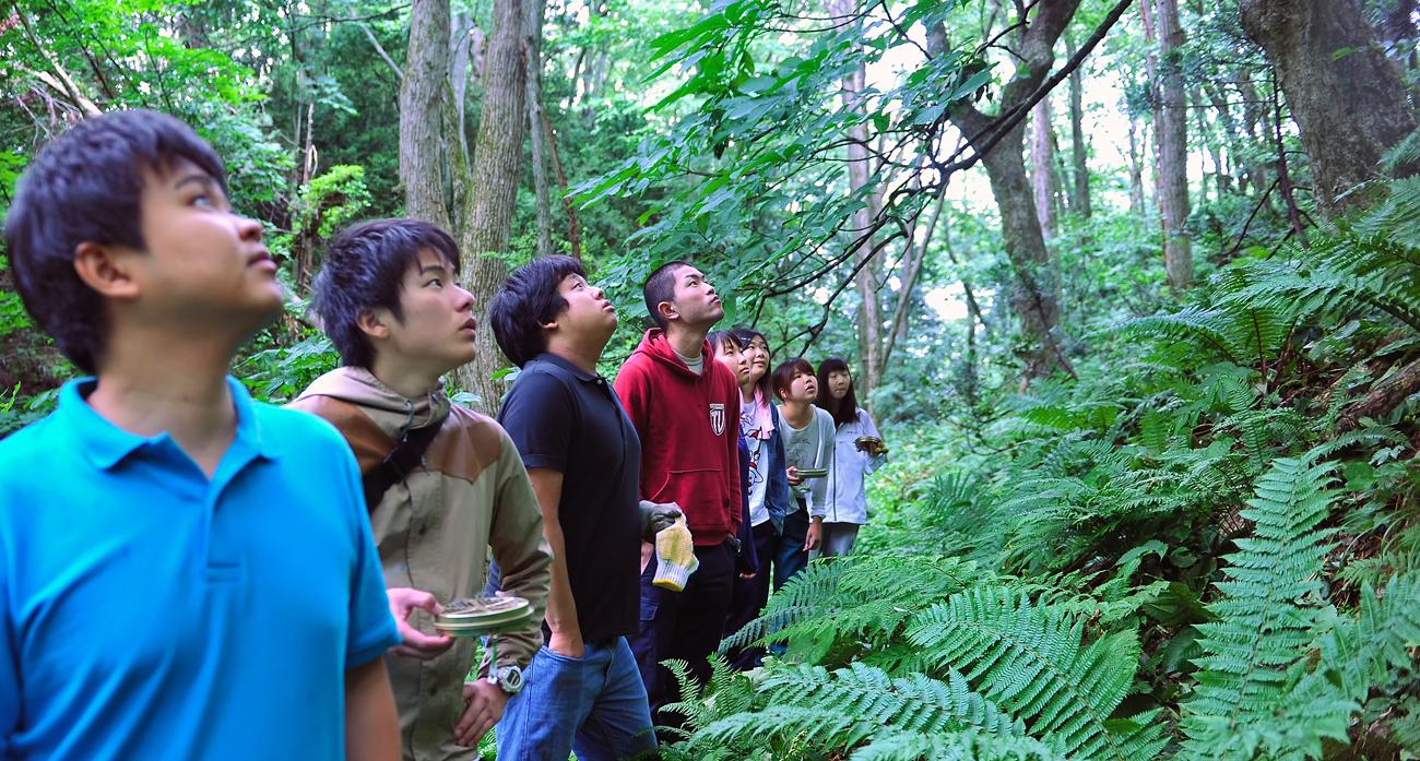 十二湖の森を散策。柴田さんから、植物の説明を聞く