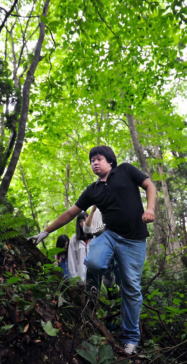 十二湖の森の中を歩く