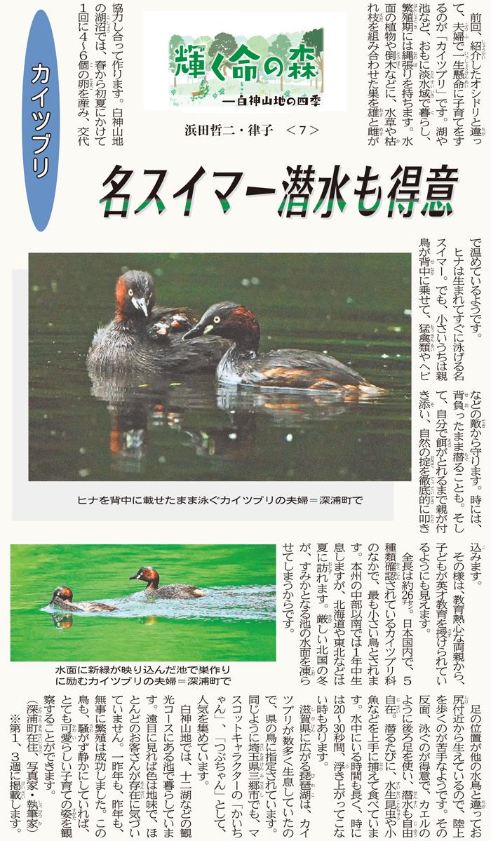 東奥日報「Juni Juni」の連載:7回目