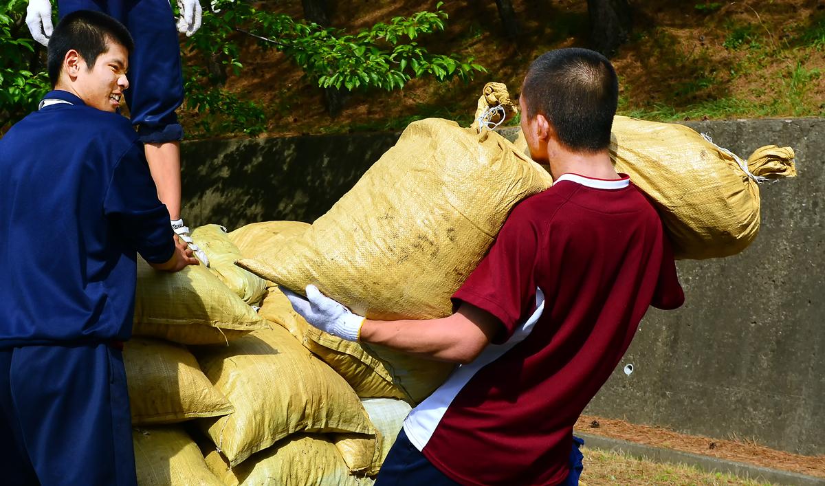 男子は一度に二つの袋を運ぶ。わぁ、力持ち!