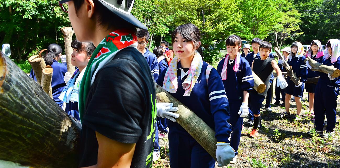 猛暑の中、並んで木を運ぶ