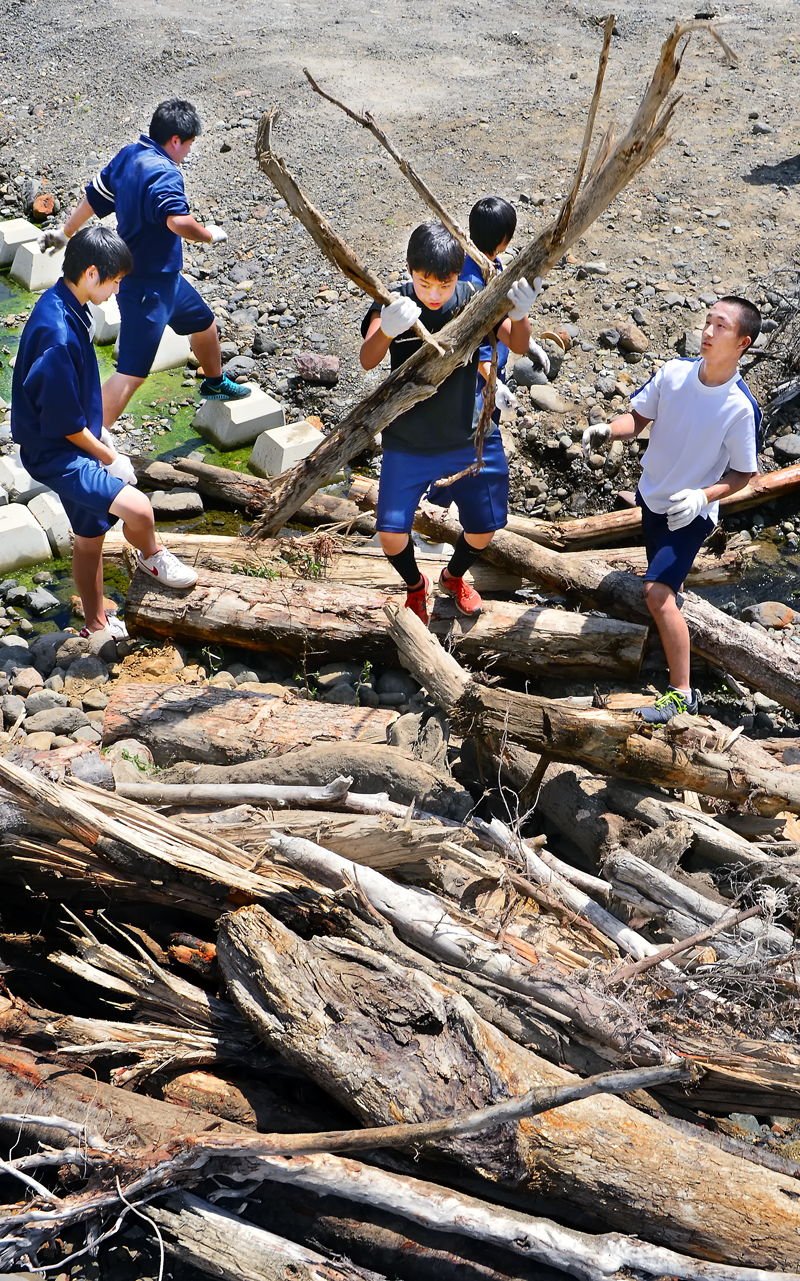 河川敷で、大きな流木を抱える生徒たち