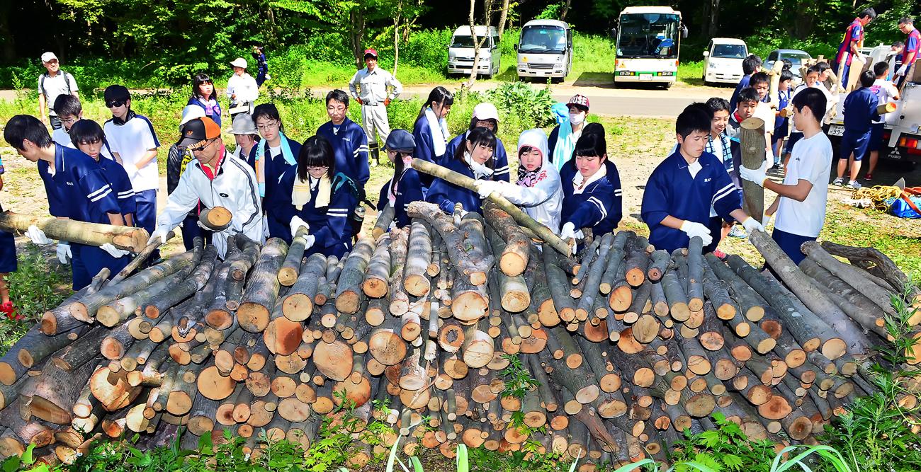 積み上げられた不要木をトラックに運ぶ生徒たち