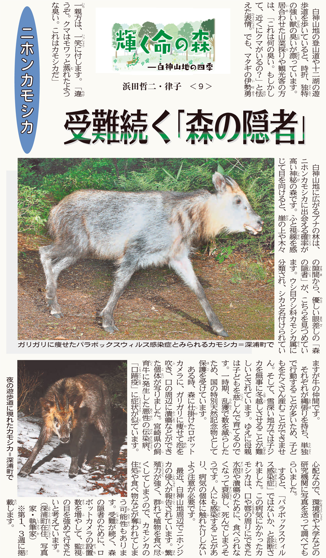 東奥日報「Juni Juni」の連載:9回目