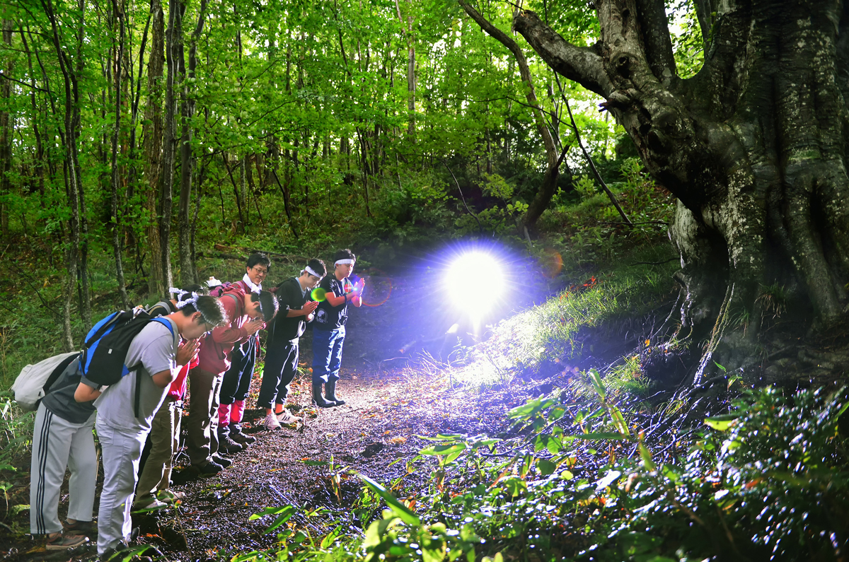NEW 御山参詣の神事に参加したIVUSAの学生たち。登山口近くにあるご神木に全員が手を合わせる