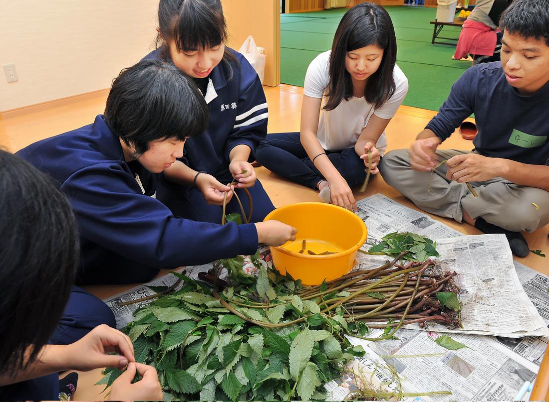 深浦校舎の生徒に習って山菜・ミズの皮むき