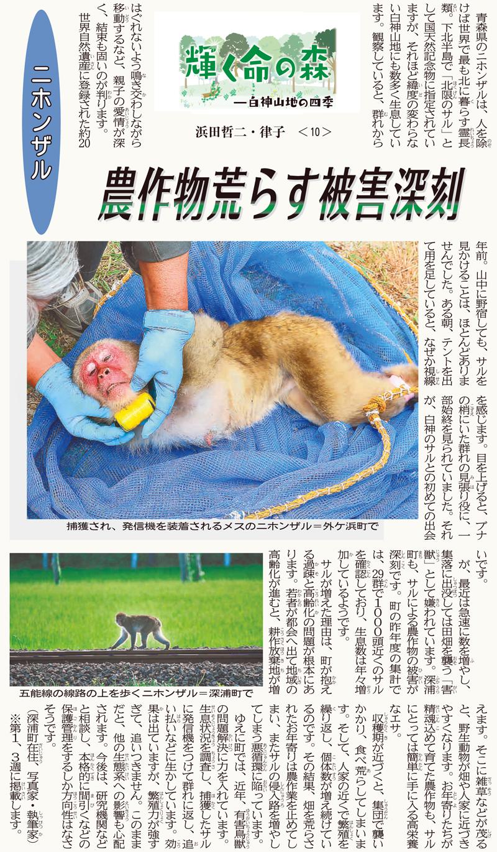 東奥日報「Juni Juni」の連載:10回目