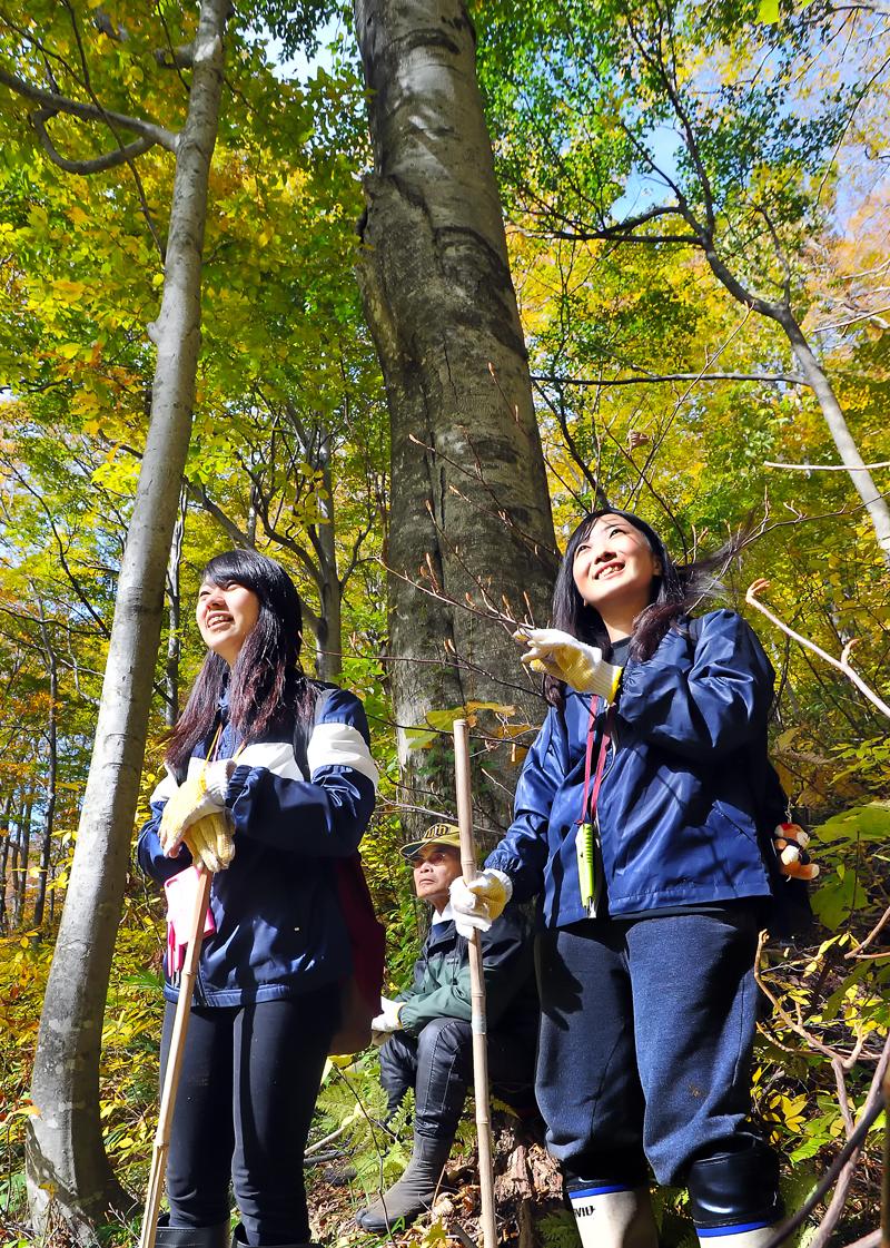 木陰で休み親方の前で森を見上げる