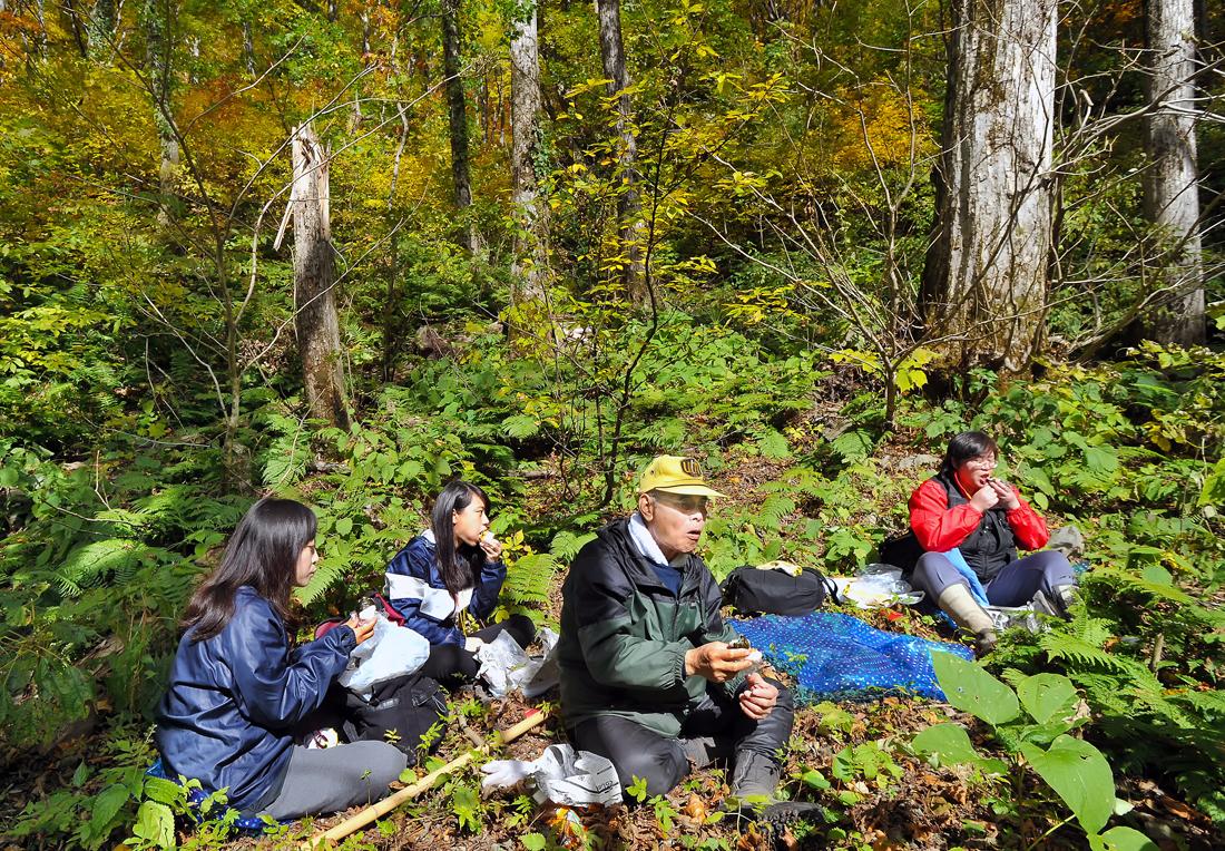 まだ、青葉が残るものの、色づいてきた森の中で昼食