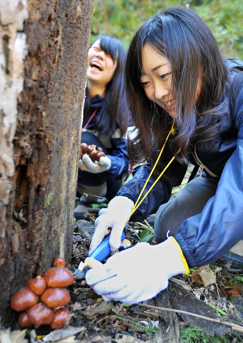 肉厚なナメコを見つけたIVUSA関西の女子学生