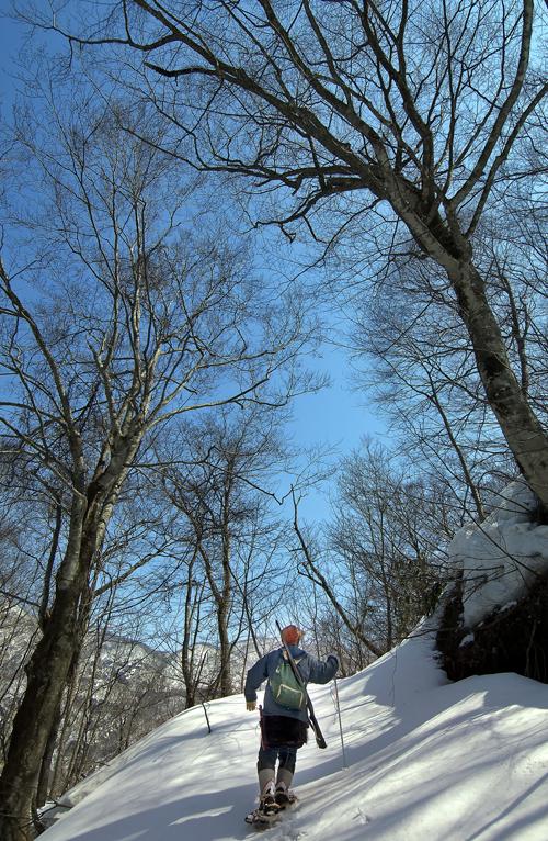 雪の山を歩く伊勢親方