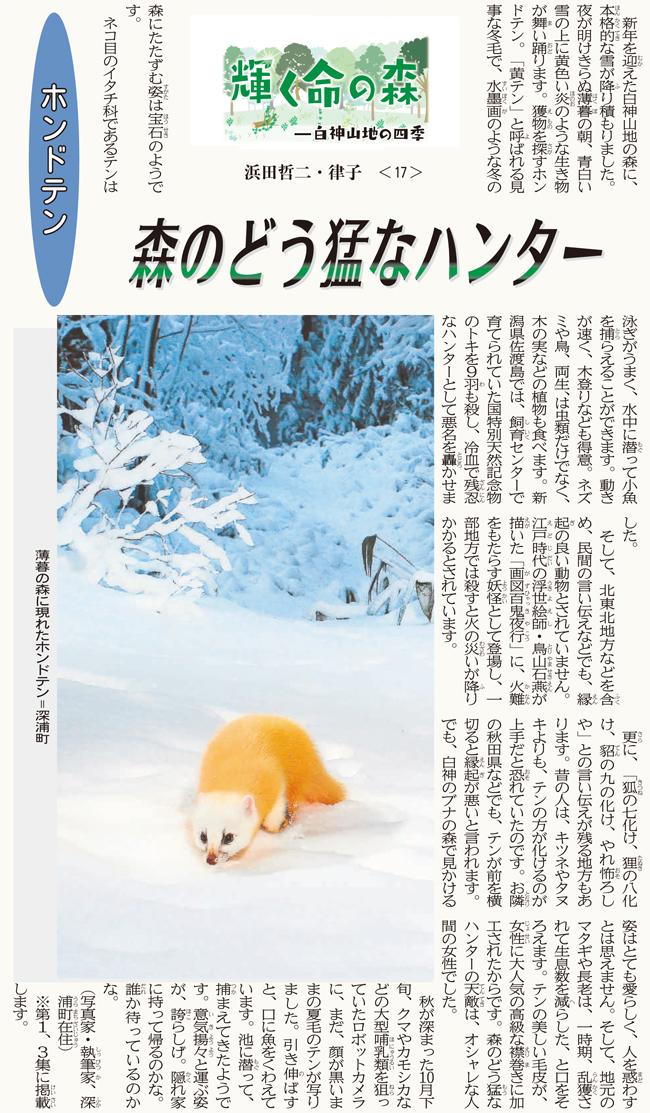 東奥日報「JUNI JUNI」の連載17回目