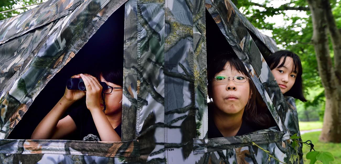 ブラインドテントから野鳥の観察をする子供たち