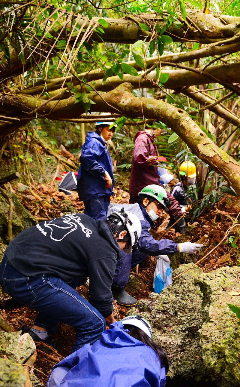 岩山を覆うジャングルで活動する学生ら