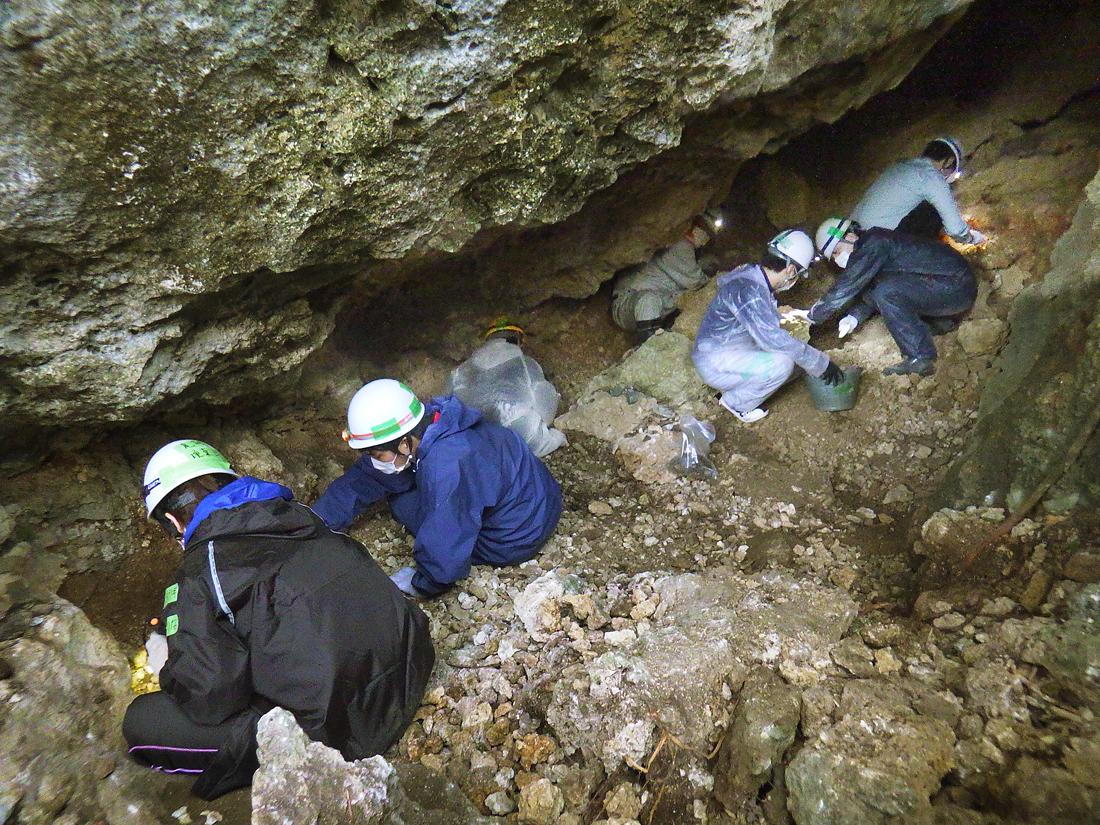 津村さんのメダルが見つかった陣地壕の入り口を掘る学生たち